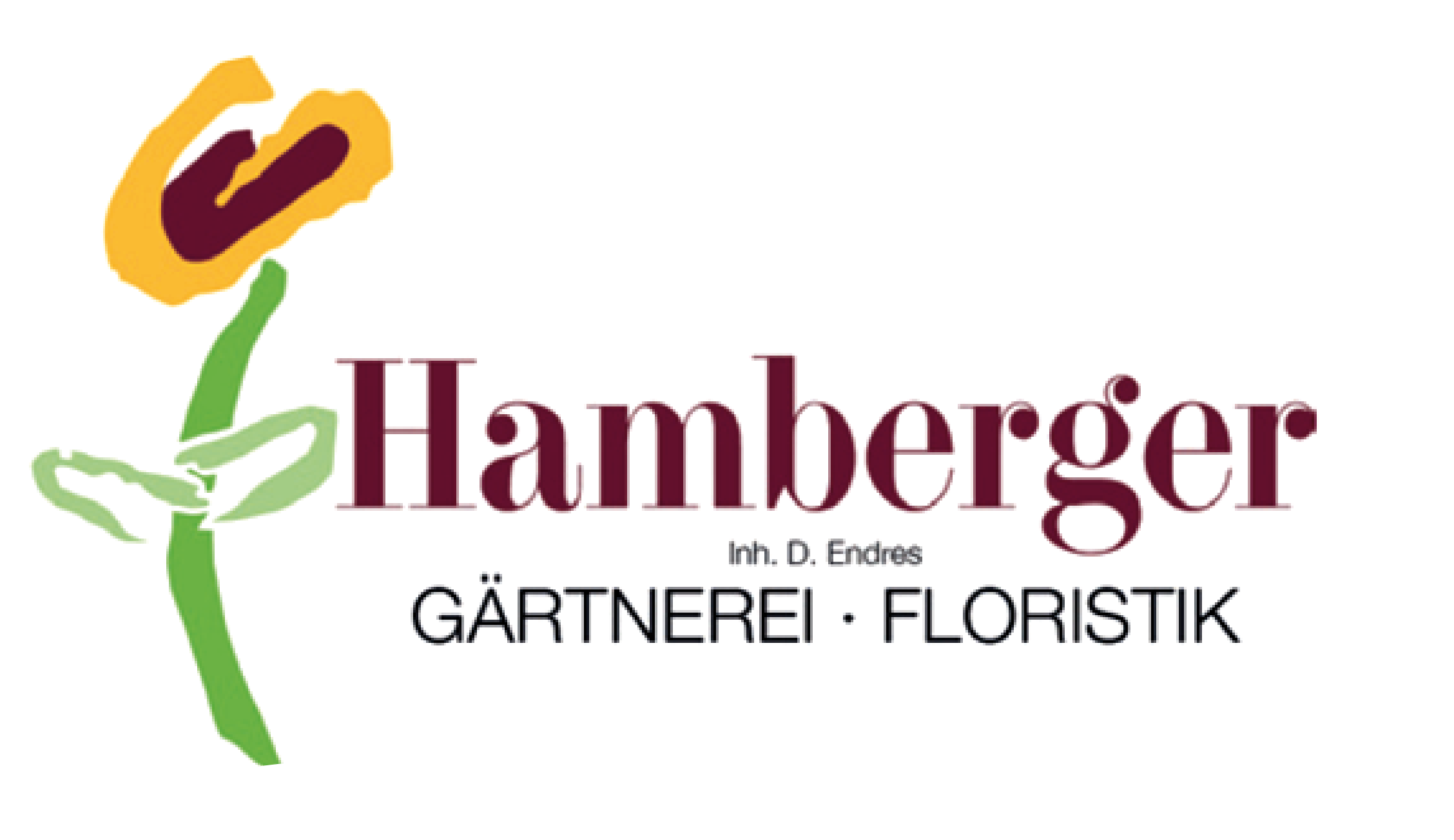 2019 flyer_hamberger